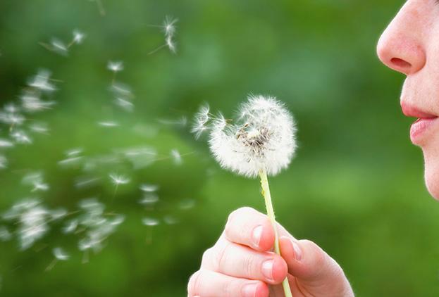 Come Prevenire Le Allergie Con La Naturopatia