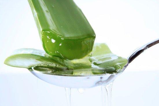 Gel Di Aloe: Il Più Efficace Contro La Cellulite